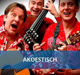 akoestische artiesten boeken bij Euro Entertainment