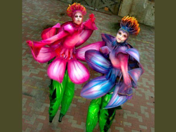 Lotus Ladies boeken? - Euro-Entertainment B.V.