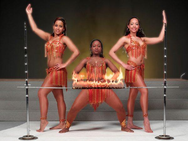 Haidy's Dance Show Limbo boeken? - Euro-Entertainment B.V.